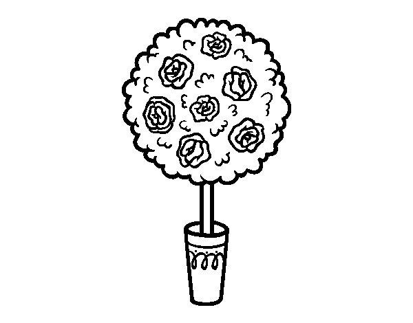 Disegno di Arbusto da Colorare