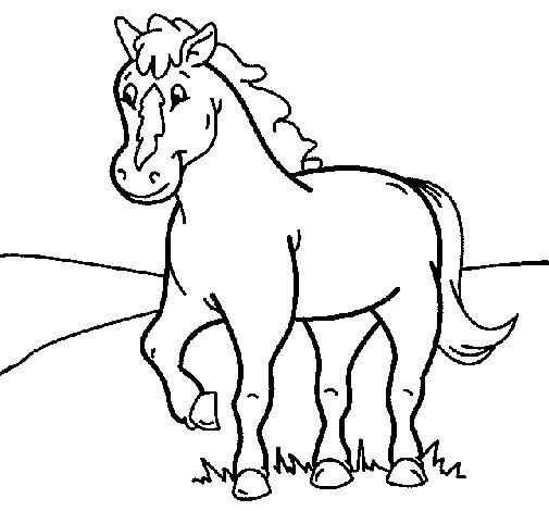 Disegno Di Cavallo 4 Da Colorare