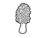 Disegno di Fungo spugnola da colorare
