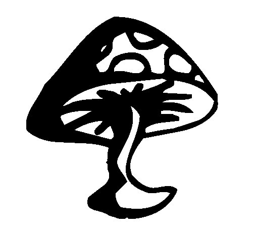 Disegno di Fungo velenoso  da Colorare