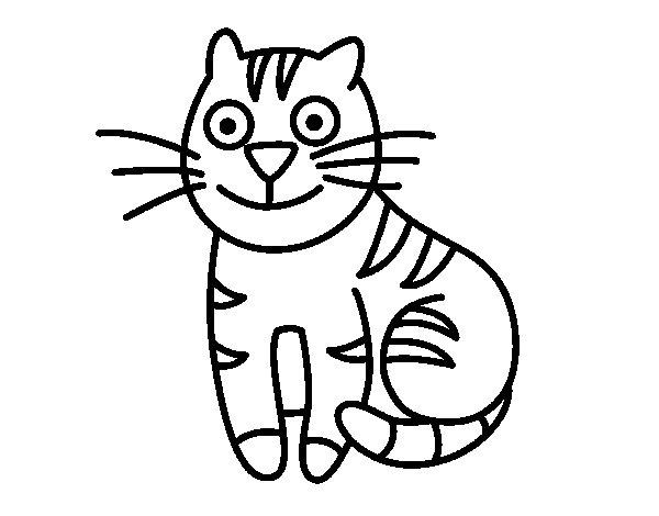 Disegno di gatto simpatico da colorare - Gatto disegno modello di gatto ...