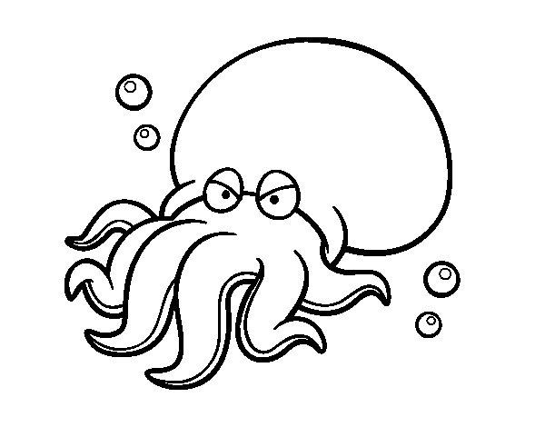 Disegno di Octopoda da Colorare