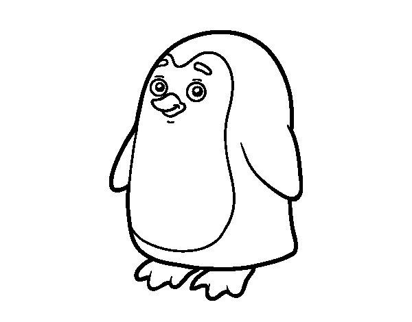 Disegno di Pinguino antartico da Colorare