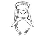 Disegno di Pinguino con il cappello da colorare