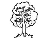 Dibujo de Un melo