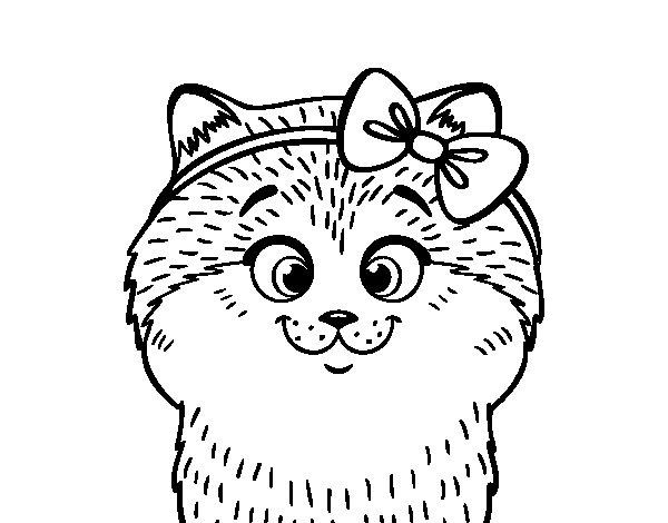Disegno di Una gattina infiocchettata da Colorare