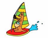 Canguri su una una tavola da windsurf