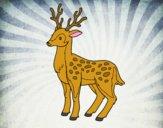 Disegno Un giovane cervo pitturato su Mathias