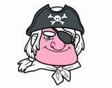 Capo pirata