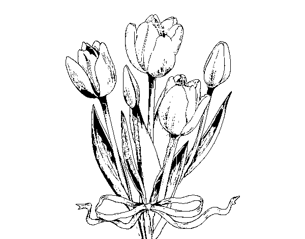 Disegno Di Rosa Con Foglie Da Colorare Acolore Com: Disegno Di Tulipani Con Un Fiocco Da Colorare
