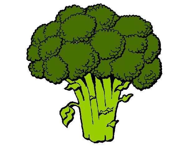 Disegni Di Broccoli Da Colorare Acolore Com